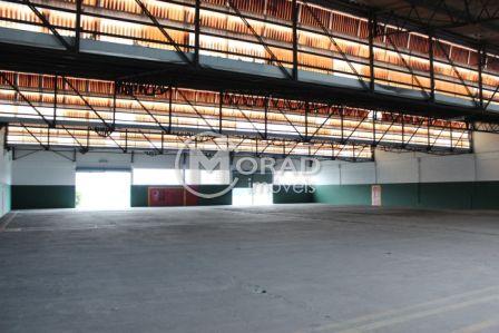 www.moradcorp.com.br